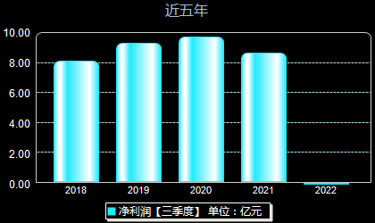重庆百货600729年净利润